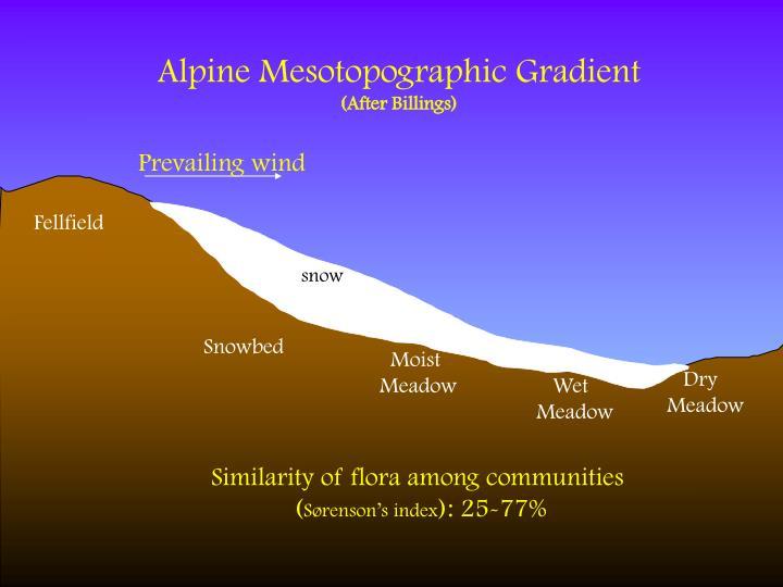Alpine Mesotopographic Gradient