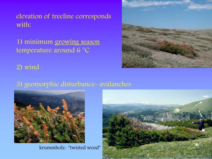 elevation of treeline corresponds