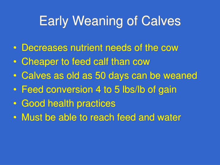 Early Weaning of Calves