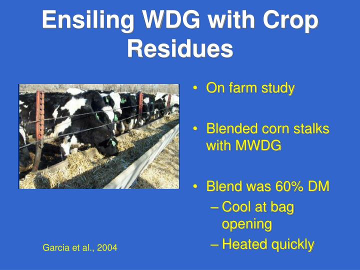 Ensiling WDG with Crop Residues
