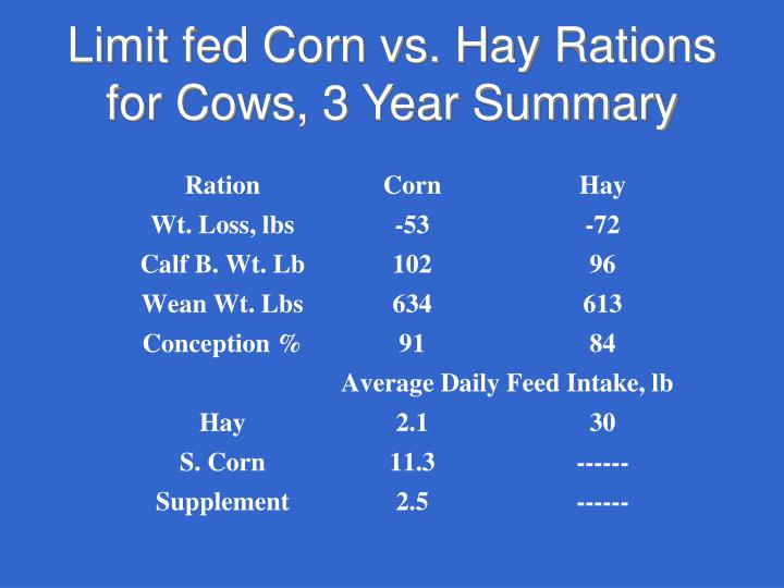 Limit fed Corn vs. Hay Rations for Cows, 3 Year Summary