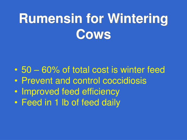 Rumensin for Wintering Cows