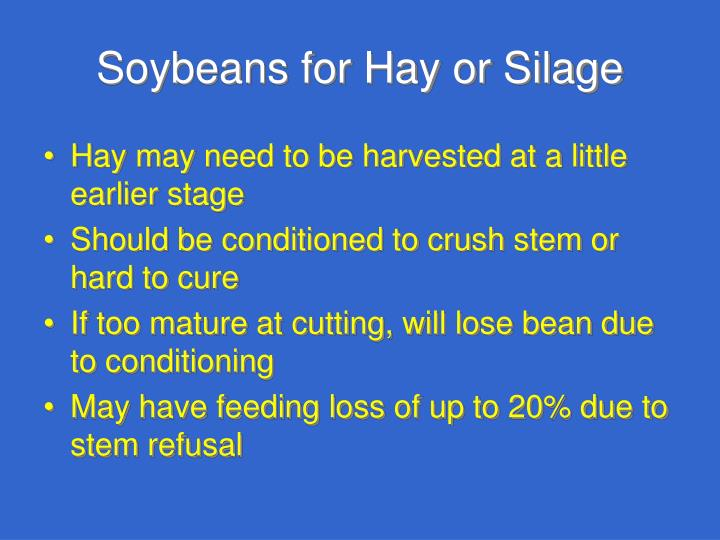 Soybeans for Hay or Silage