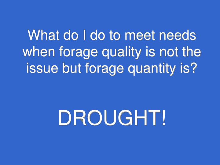 What do I do to meet needs when forage quality is not the issue but forage quantity is?