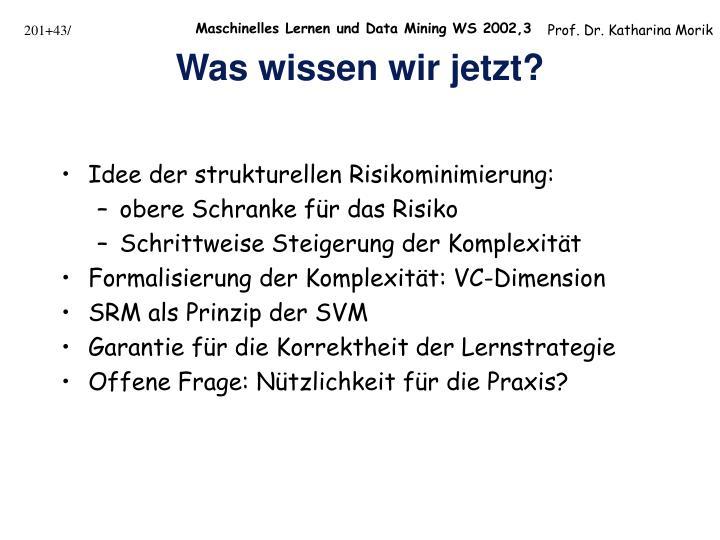 Idee der strukturellen Risikominimierung: