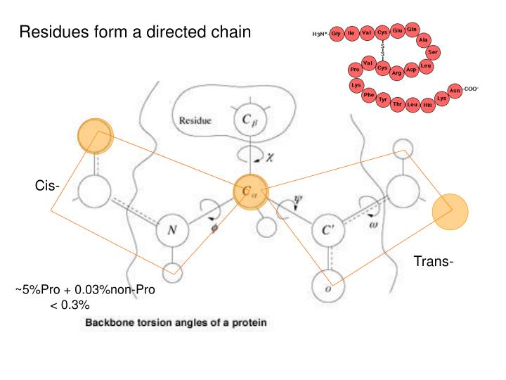 Residues form a directed chain
