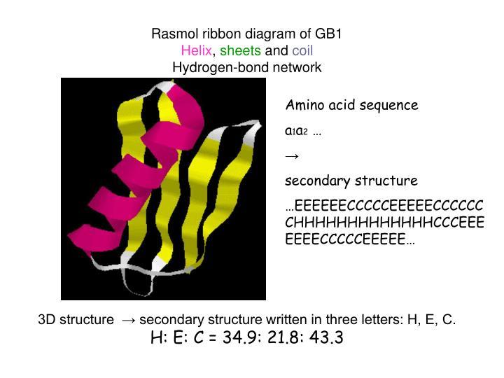 Rasmol ribbon diagram of GB1