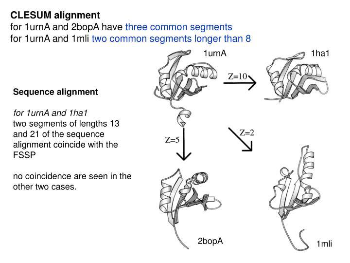CLESUM alignment