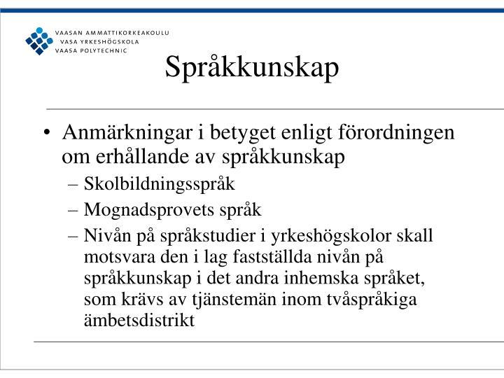 Språkkunskap