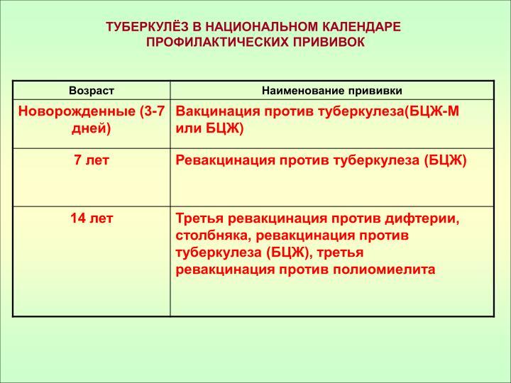 ТУБЕРКУЛЁЗ В НАЦИОНАЛЬНОМ КАЛЕНДАРЕ