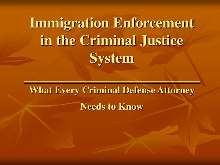 Immigration Enforcement in the Criminal Justice System