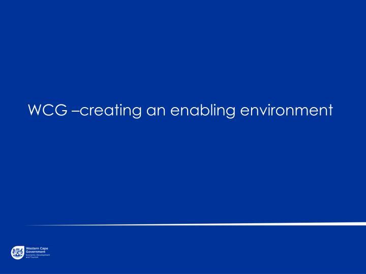 WCG –creating an enabling environment