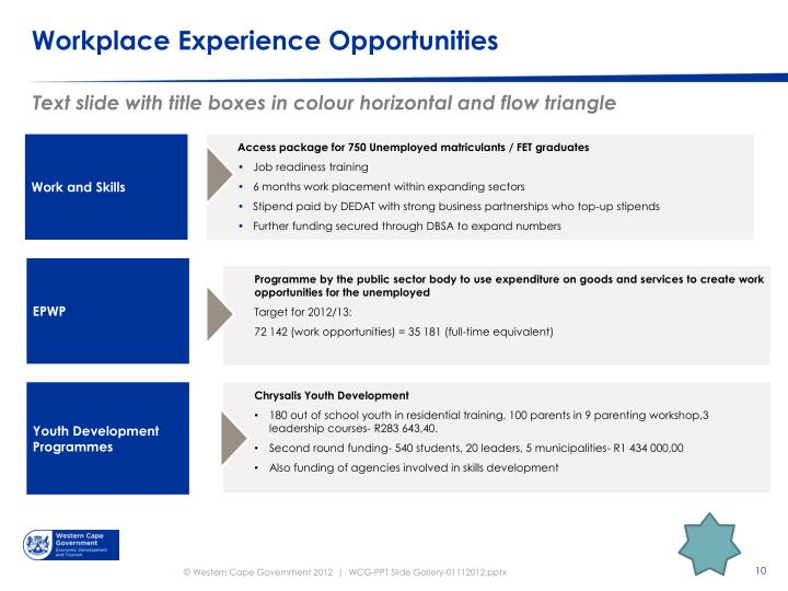 Workplace Experience Opportunities