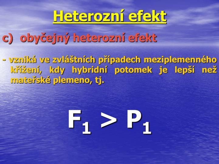 Heterozní