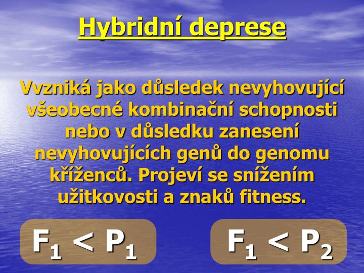 Hybridní