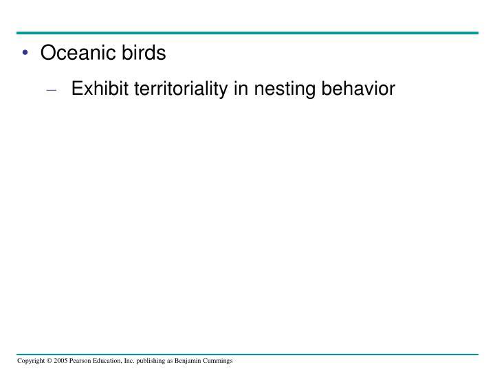 Oceanic birds