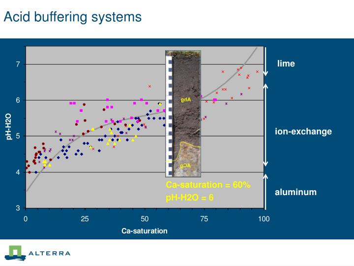 Acid buffering systems