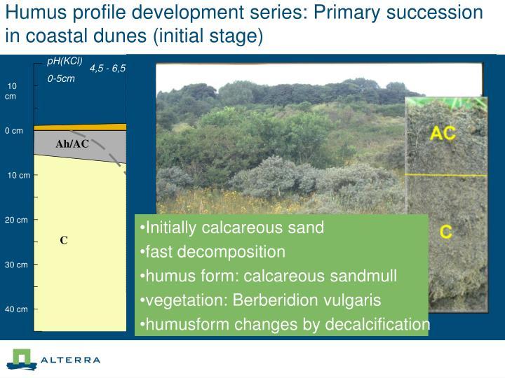 Humus profile development series: Primary succession in coastal dunes (initial stage)
