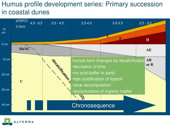 Humus profile development series: Primary succession in coastal dunes