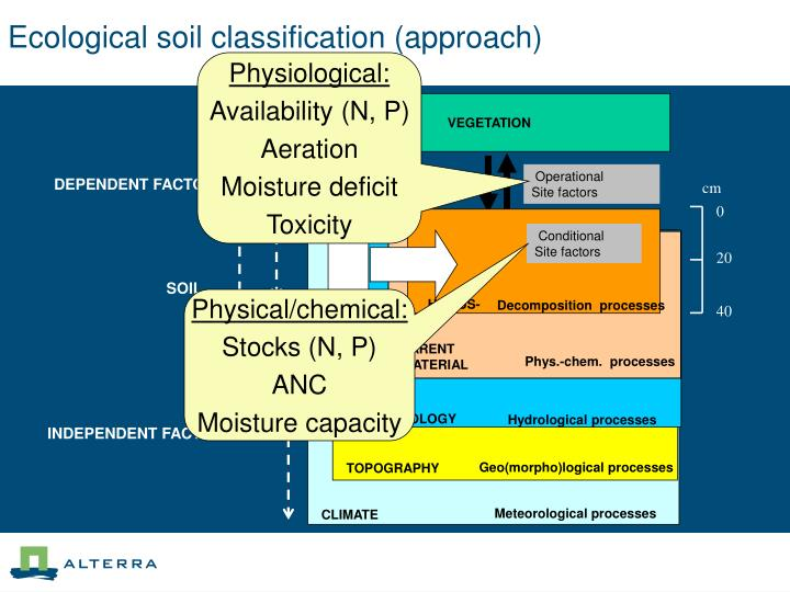 Ecological soil classification (approach)