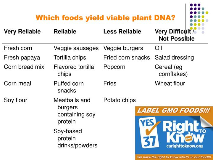 Which foods yield viable plant DNA?