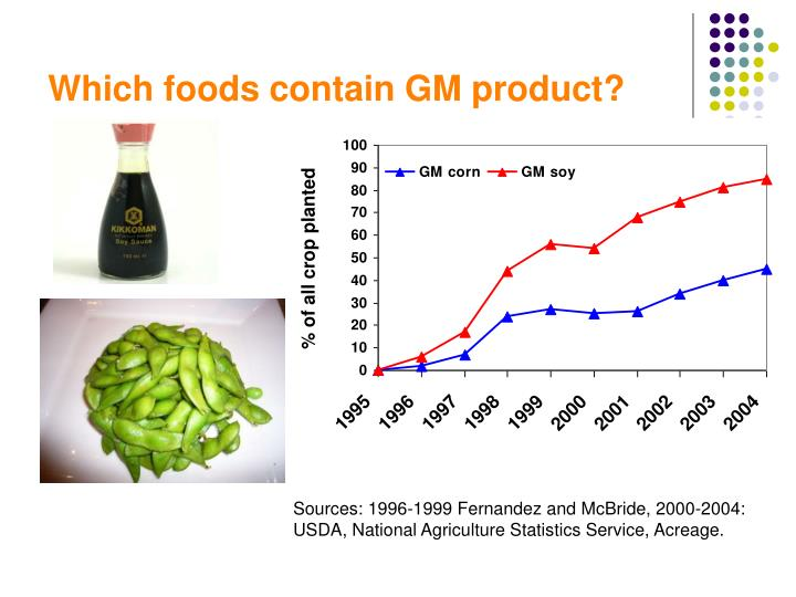 Which foods contain GM product?