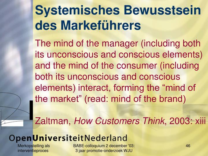 Systemisches Bewusstsein des Markeführers