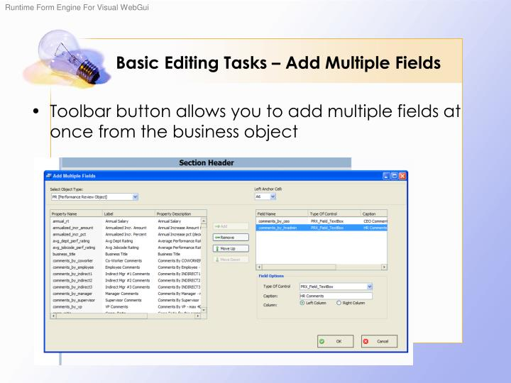 Basic Editing Tasks – Add Multiple Fields
