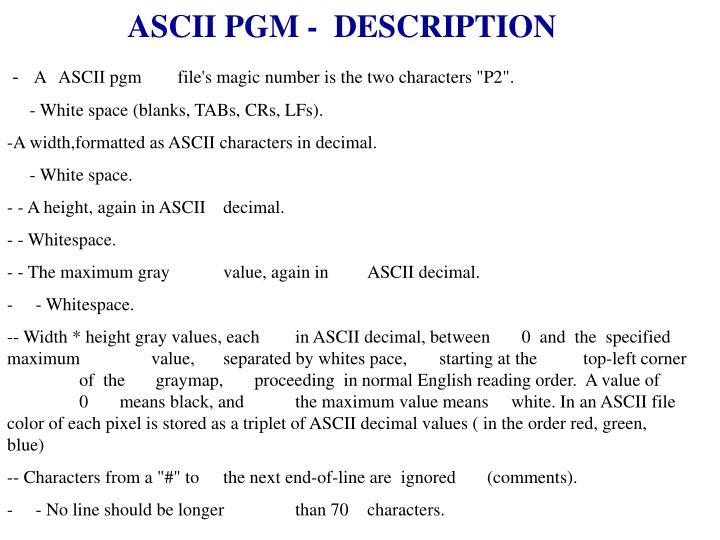 ASCII PGM -