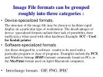 image file formats can be grouped roughly into three categories