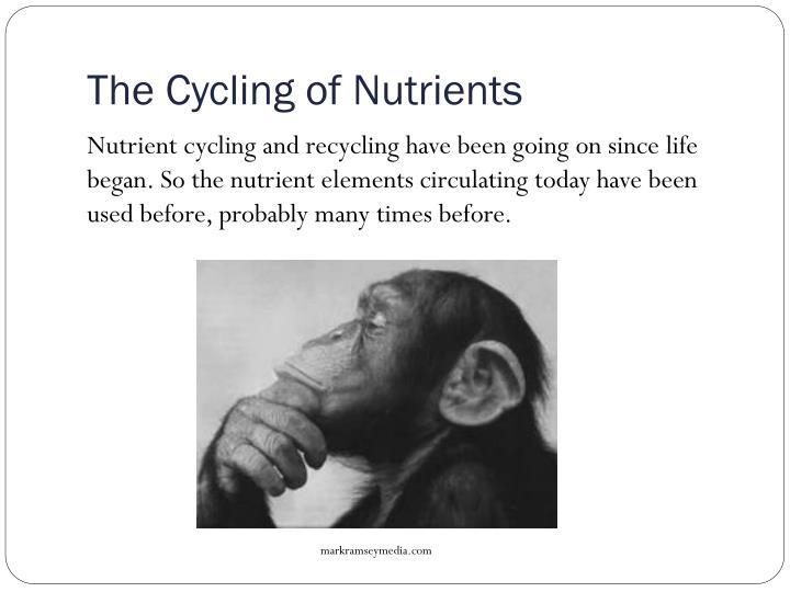 The Cycling of Nutrients