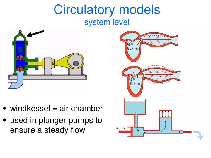 Circulatory models
