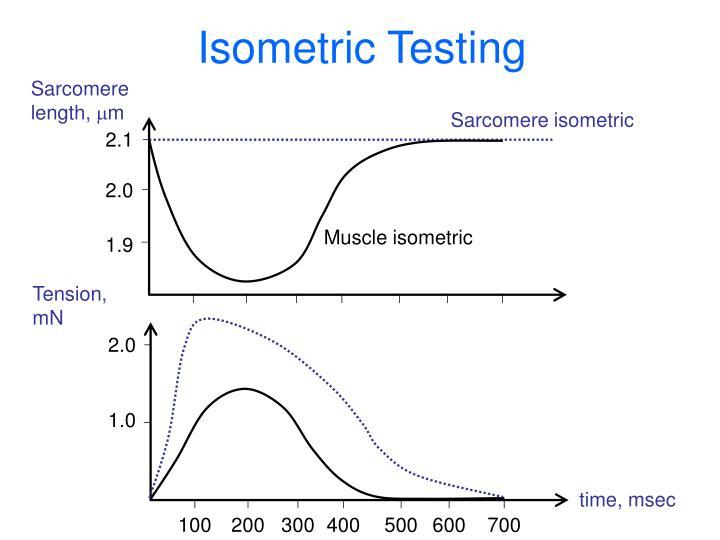 Isometric Testing