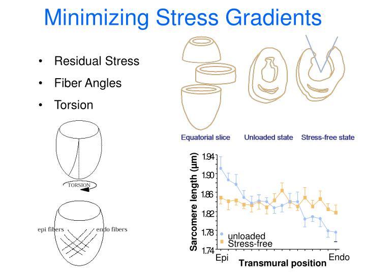 Minimizing Stress Gradients
