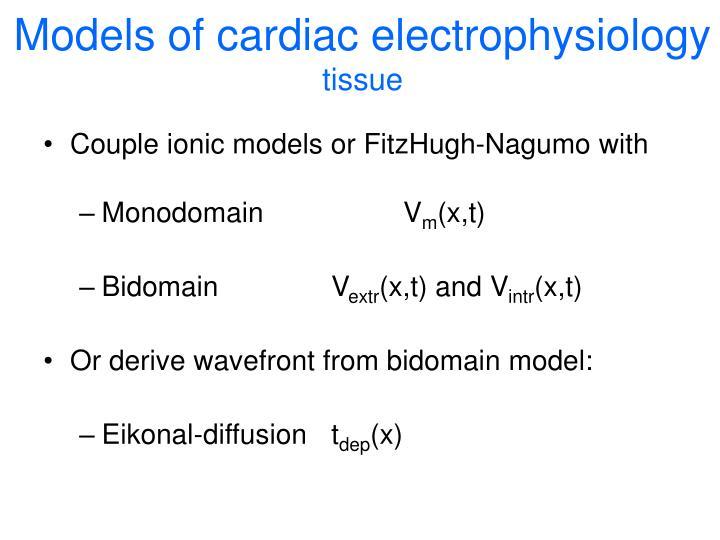 Models of cardiac electrophysiology