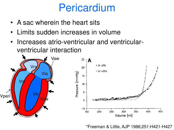 Pericardium