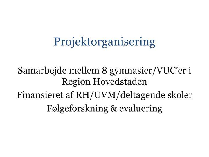 Projektorganisering