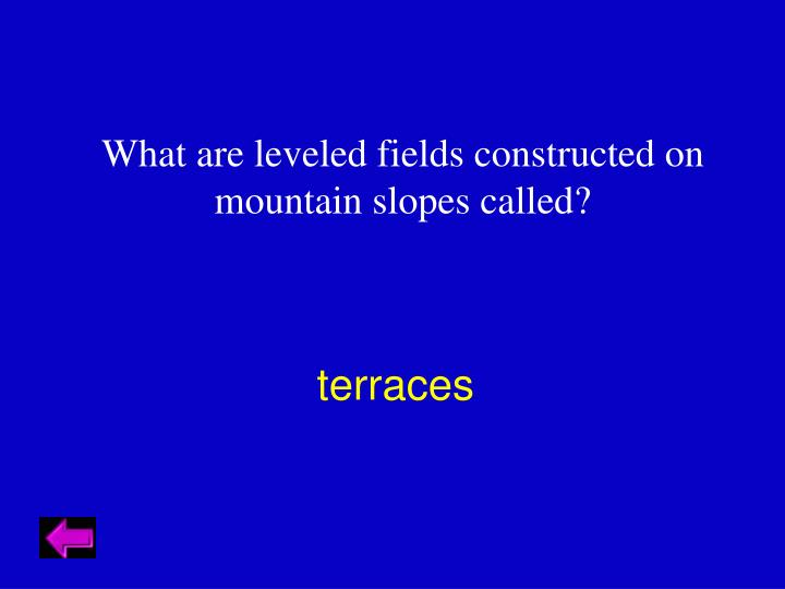 What are leveled fields constructed on mountain slopes called?