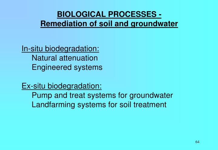 BIOLOGICAL PROCESSES - Remediation of soil and groundwater