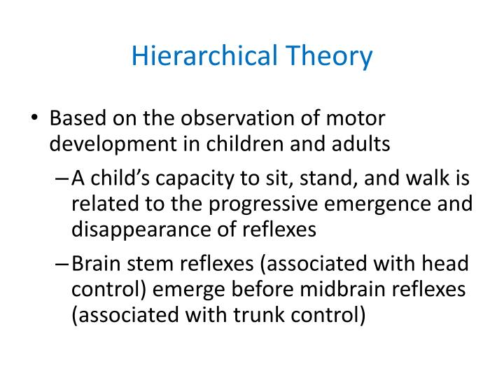 Hierarchical Theory