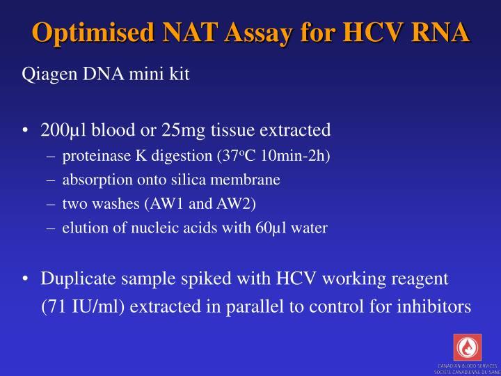 Optimised NAT Assay for HCV RNA