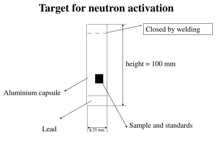 Target for neutron activation