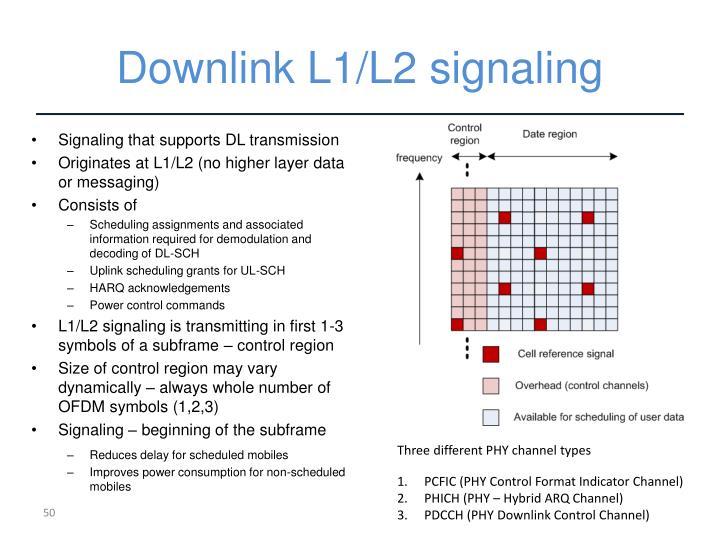 Downlink L1/L2 signaling