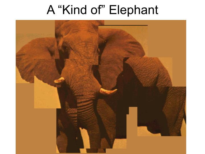 "A ""Kind of"" Elephant"