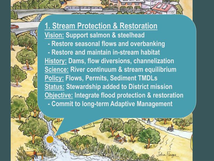 1. Stream Protection & Restoration