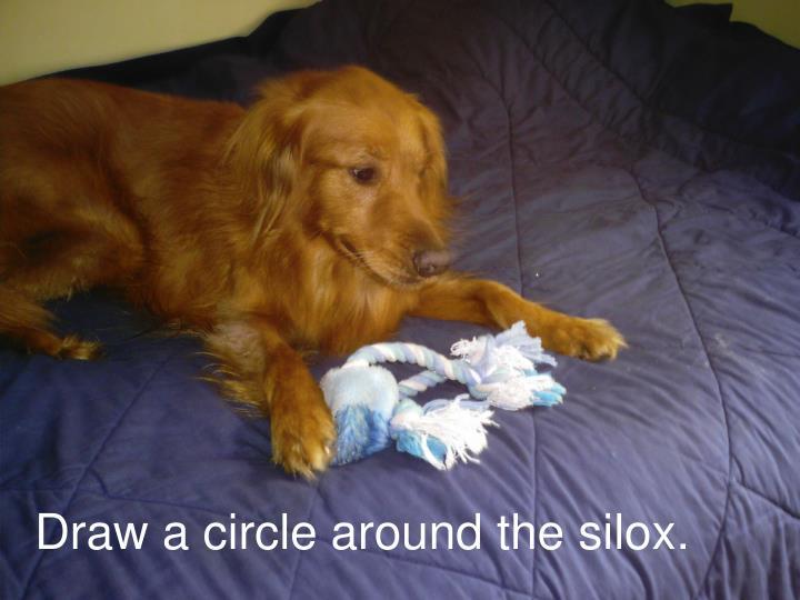 Draw a circle around the silox.