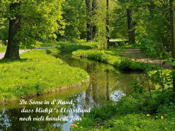 De Some in d'Hand,