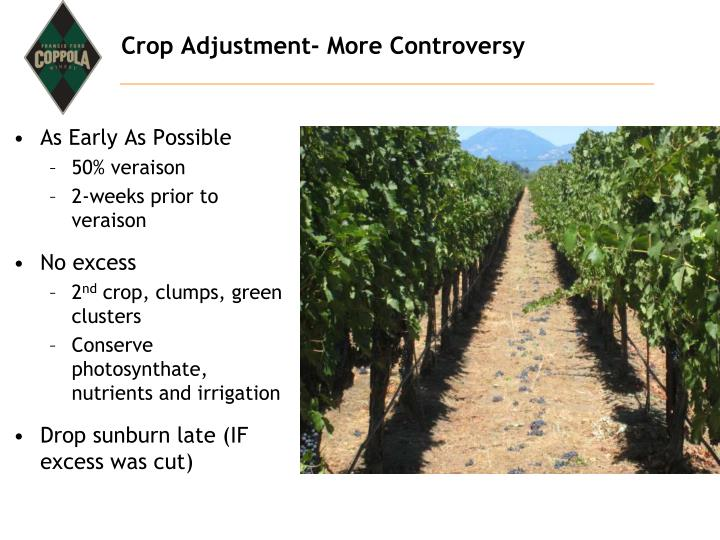 Crop Adjustment- More Controversy