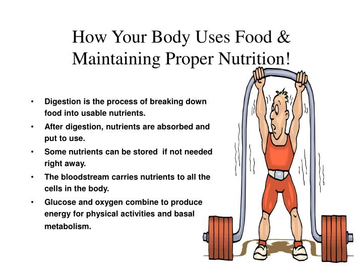 How Your Body Uses Food &