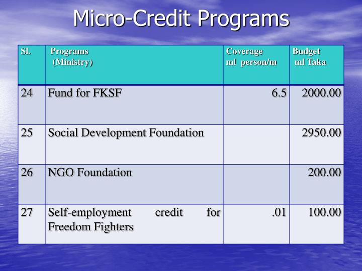 Micro-Credit Programs
